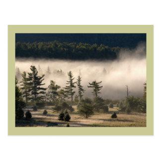 Carte Postale Brouillard de matin dans l'Adirondacks