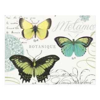 Carte Postale butterfiles botaniques vintages modernes