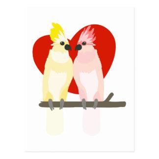 Carte Postale Cacatoès romantiques