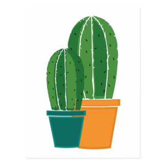 Carte Postale Cactus mis en pot