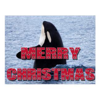 Carte Postale Cadeaux d'houblon d'espion de baleine d'orque de