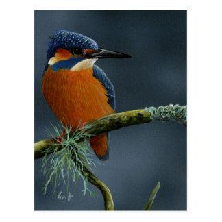 Carte Postale Cadeaux lumineux de martin-pêcheur