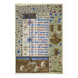 Carte Postale Calendrier médiéval : Juillet