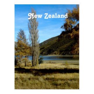 Carte Postale Campagne de la Nouvelle Zélande