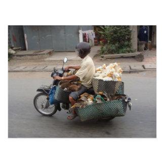 Carte Postale Canards sur le motocyclette-Vietnam