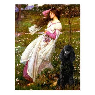 Carte Postale Caniche standard Windflowers-Noir