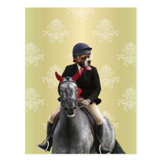 Carte Postale Caractère drôle de cavalier de cheval