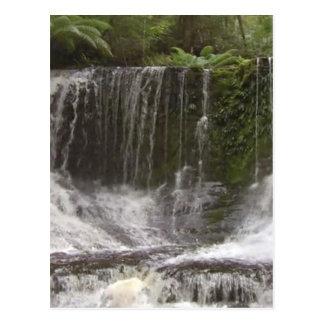 Carte Postale Cascades d'oasis en Tasmanie au sud de l'Australie