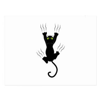 Carte Postale cat claws chat avec des griffes