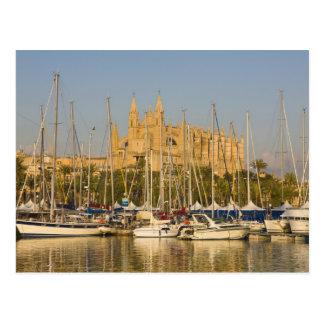 Carte Postale Cathédrale et marina, Palma, Majorque, Espagne 2