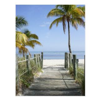 Carte Postale Ce chemin vers le paradis