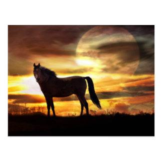 Carte postale céleste de cheval et de lune