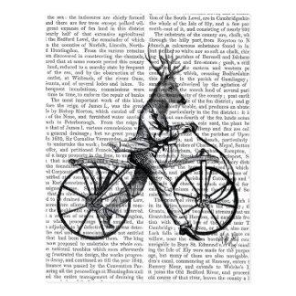 Carte Postale Cerfs communs élégants sur la bicyclette vintage