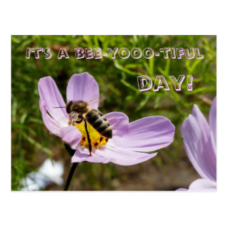 Carte Postale C'est un jour d'abeille-yooo-tiful ! /Abeille