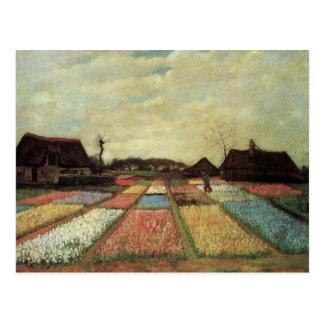 Carte Postale Champs d'ampoule par Vincent van Gogh