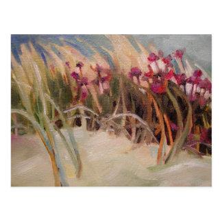 Carte Postale Chardon de plage et herbe de dune