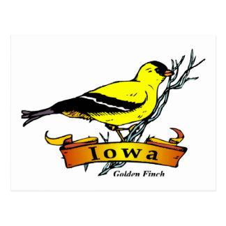 Carte Postale Chardonneret de l'Iowa