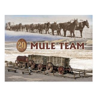 Carte Postale chariots d'équipe de Vingt-mule, Death Valley, la