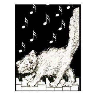 Carte Postale Chat blanc sur des clés de piano