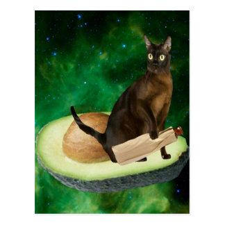 Carte Postale chat d'avocat