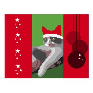 Carte Postale Chat de calicot drôle de Noël avec le casquette de