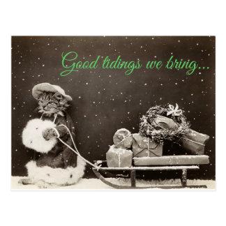 Carte Postale Chat de Noël