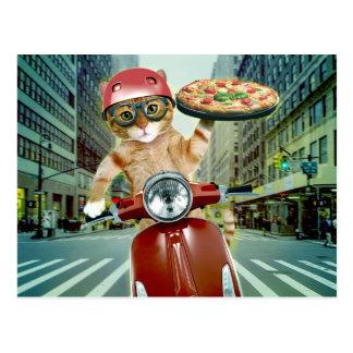 Carte Postale chat de pizza - chat - la livraison de pizza