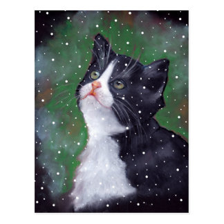 Carte Postale Chat de smoking regardant des flocons de neige,