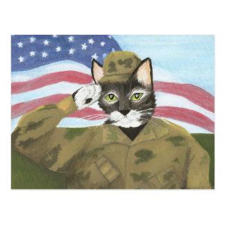 Carte Postale Chat de soldat d'armée