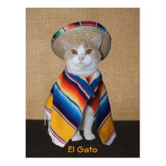 Carte Postale Chat d'EL Gato dans le sombrero et le Serape