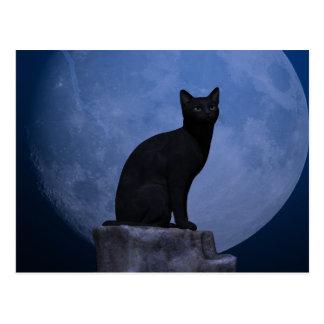Carte Postale Chat éclairé par la lune