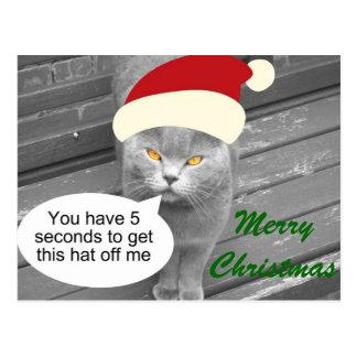 Carte Postale Chat fâché de Père Noël