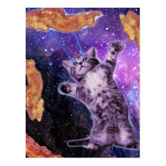 Carte Postale Chat faisant frire le lard avec le laser d'oeil