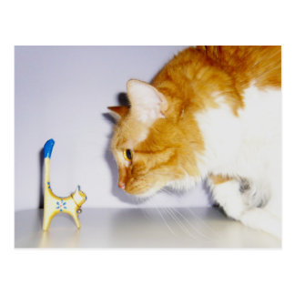 Carte Postale Chat humoristique regardant fixement la statue en