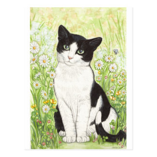 Carte Postale Chat noir et blanc avec des marguerites