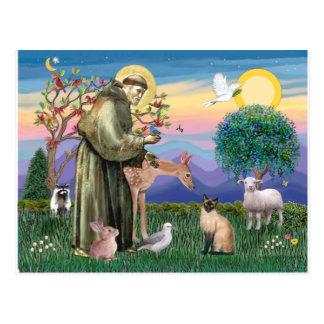 Carte Postale Chat siamois et le St Francis