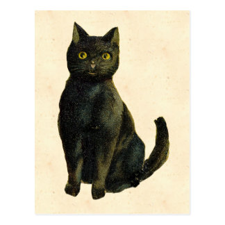 Carte Postale Chat vintage de Halloween