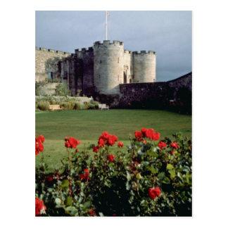 Carte Postale Château de Stirling, fleurs de l'Ecosse