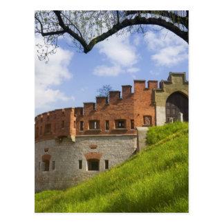 Carte Postale Château de Wawel, Cracovie, Pologne