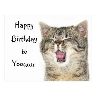 Carte Postale Chaton de joyeux anniversaire
