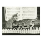 Carte Postale Chaton deux jouant sur le clavier de piano, (B&W)