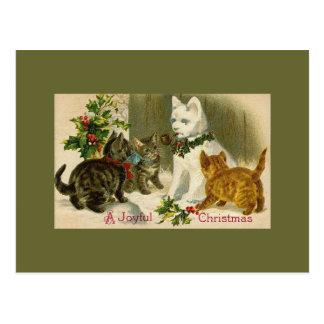 Carte Postale Chatons et chat de bonhomme de neige