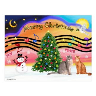 Carte Postale Chats abyssiniens du lever de soleil de Noël 2 -