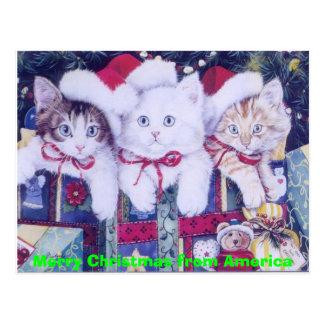 Carte Postale Chats de Noël de courrier