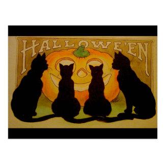 Carte Postale Chats noirs vintages et Jack O'Lantern de
