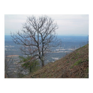 Carte Postale Chattanooga, Tennessee 001