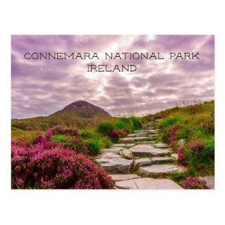 Carte Postale Chemin en pierre, fleurs sauvages, parc national