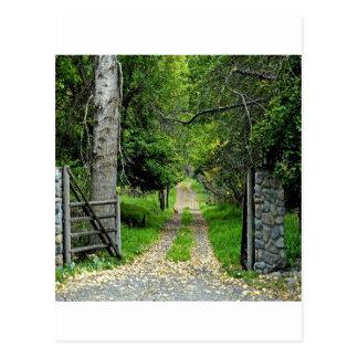 Carte Postale Chemin forestier au jardin enchanté