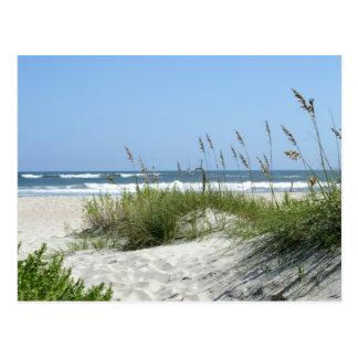 Carte Postale Chemin vers l'île de Mer-Ocracoke
