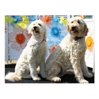 Carte Postale Chester et Lilly - GoldenDoodle -7